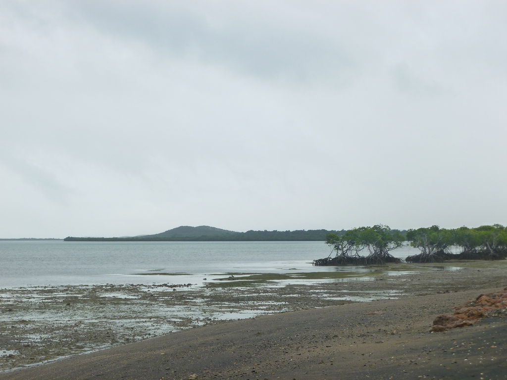 Image result for noumea cyclone