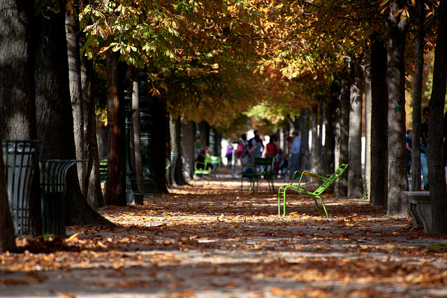 Paris in Autumn by Daxis - MyFrenchLife.org