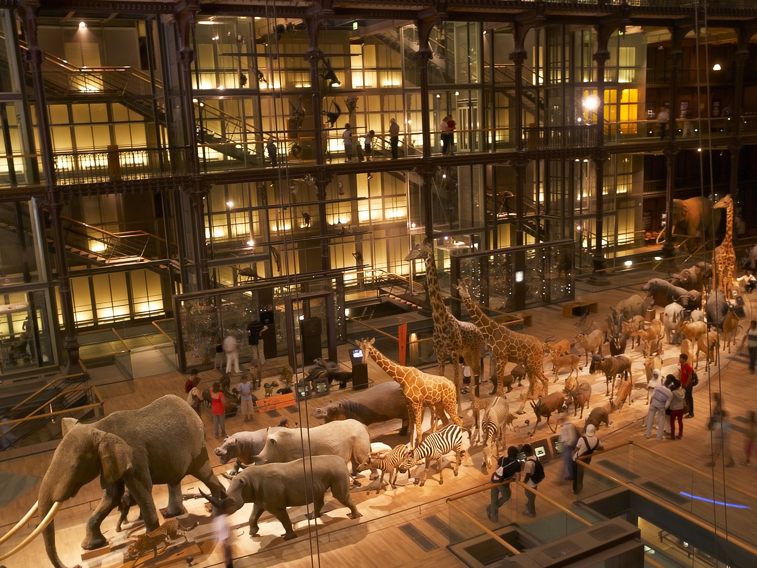 Paris with kids - Travelling with children - things to do in paris - museum histoire naturelle My French Life