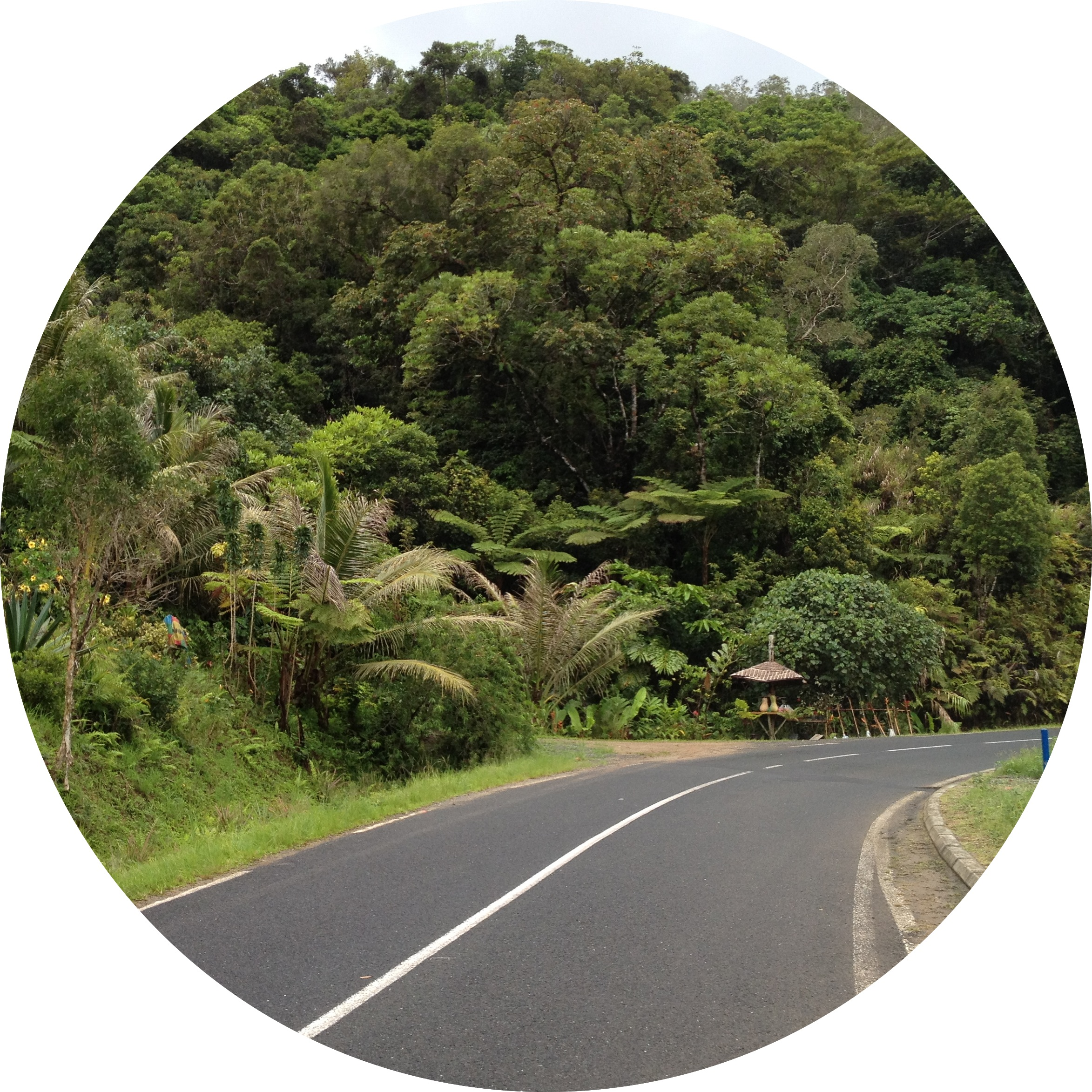 New Caledonia - Driving - Road trip - www.MyFrenchLife.org