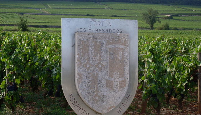 MyFrenchLife™ - MyFrenchLife.org - Biking through Burgundy – wine and wanderlust – the Ultimate Burgundy Guide - Corton