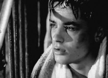 MyFrenchLife™ – MyFrenchLife.org – Alain Delon – French film star Alain Delon 1960