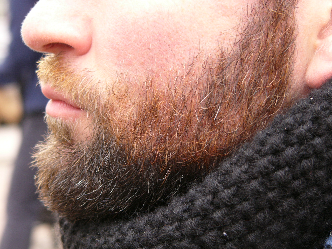 MyFrenchLife™ - MyFrenchLife.org - Beard trimmer - French Beard