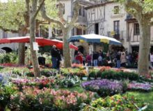 MyFrenchLife™ – MyFrenchLife.org – Fources flower festival – Fources – Midi-Pyrenees – April