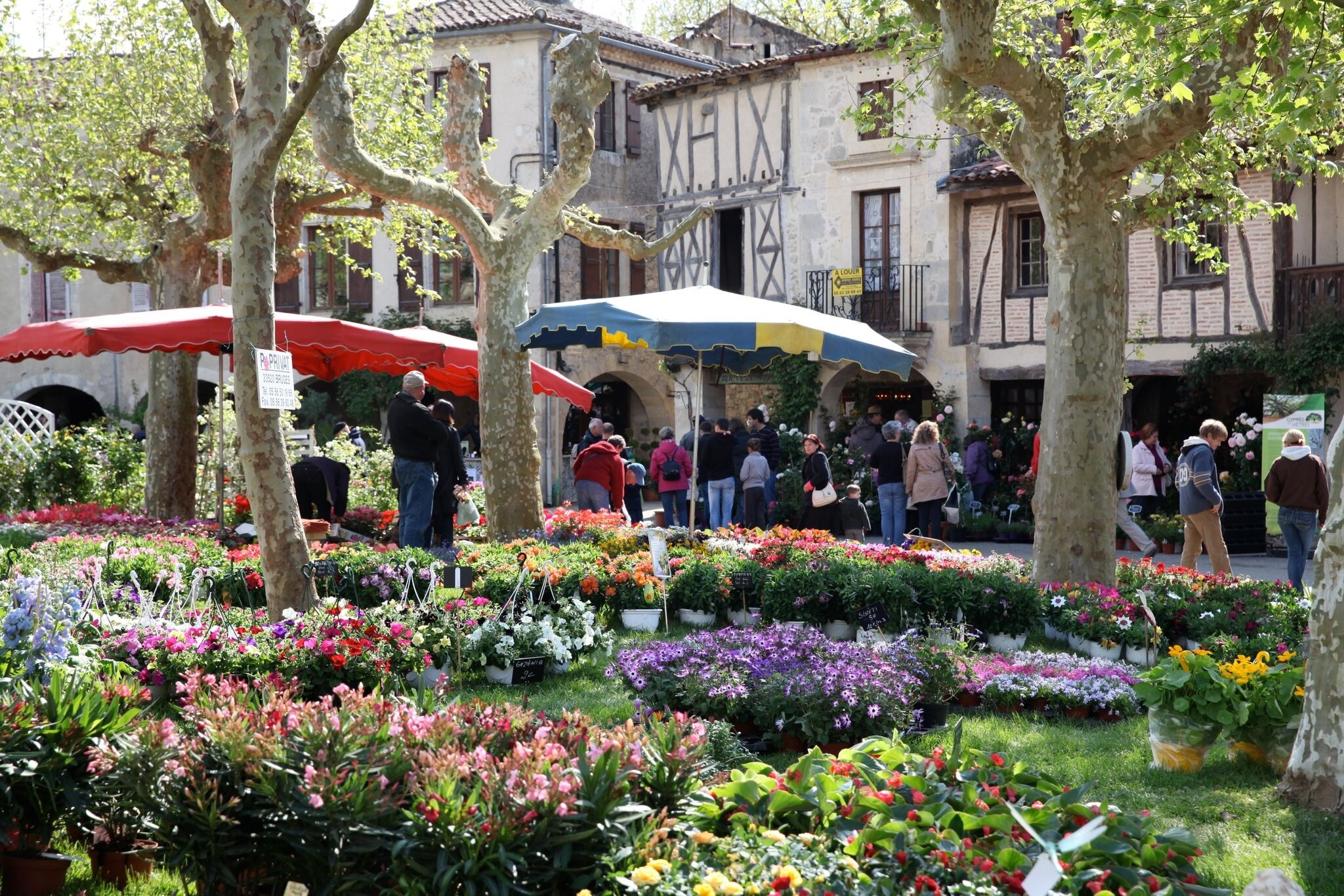 MyFrenchLife™ – MyFrenchLife.org – Fourcès flower festival – Fourcès – Gascony – April