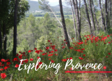 MyFrenchLife™ – MyFrenchLife.org – Exploring Provence – World War One - Noubliez Jamais