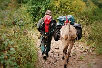 MyFrenchLife™ – MyFrenchLife.org – the Cevennes – le chemin de Stevenson – Robert Louis Stevenson – donkey – historical walks