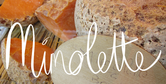 Mimolette - French cheese - hard