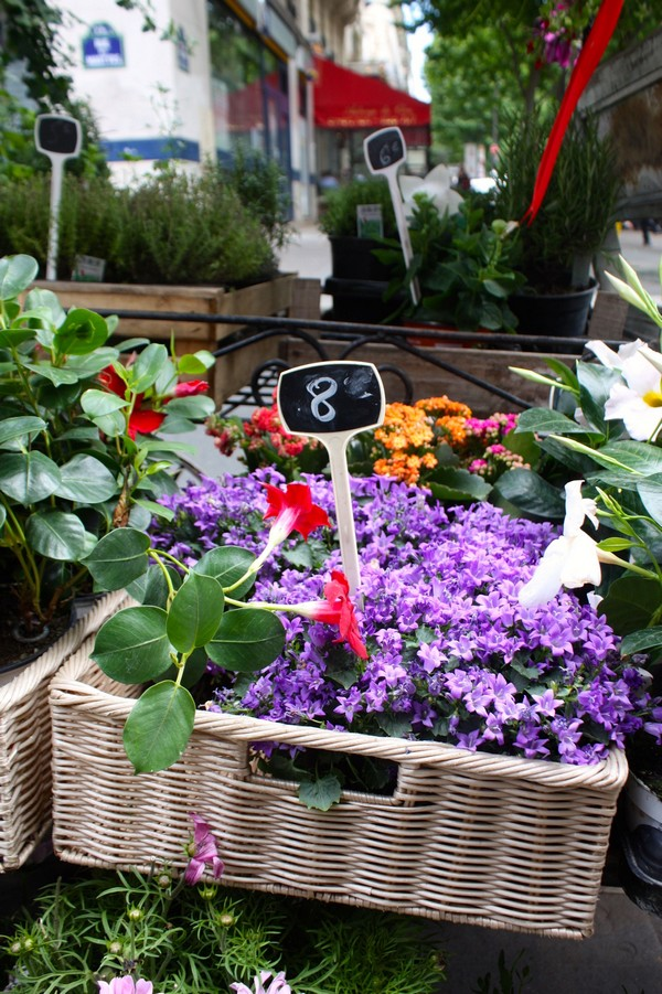 MyFrenchLife™ – MyFrenchLife.org – Paris Mosaic – Des fleurs pour Soi - Flowers Purple