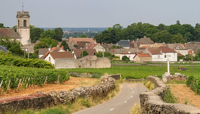 MyFrenchLife™ - MyFrenchLife.org - Private Wine Tour Burgundy - Wine & Wanderlust - the Ultimate Burgundy Guide - The road to Pommard