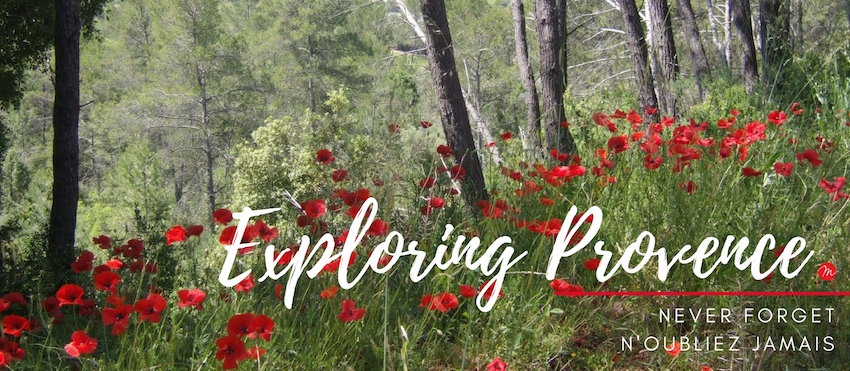 MyFrenchLife™ - MyFrenchLife.org - Exploring Provence - Jan Leishman - World War One - Poppies