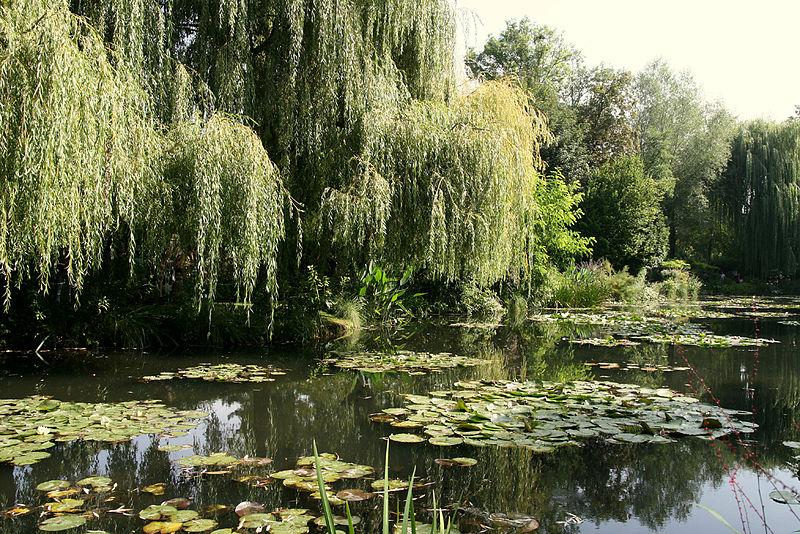 MyFrenchLife™ - MyFrenchLife.org - Monet Giverny - Jardin Monet