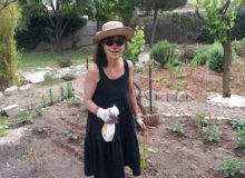 MyFrenchLife™ - MyFrenchLife.org - Two Lives - Paris & Southern France - Spending time in the garden