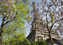 MyFrenchLife™-Paris in March-The_Eiffel_Tower