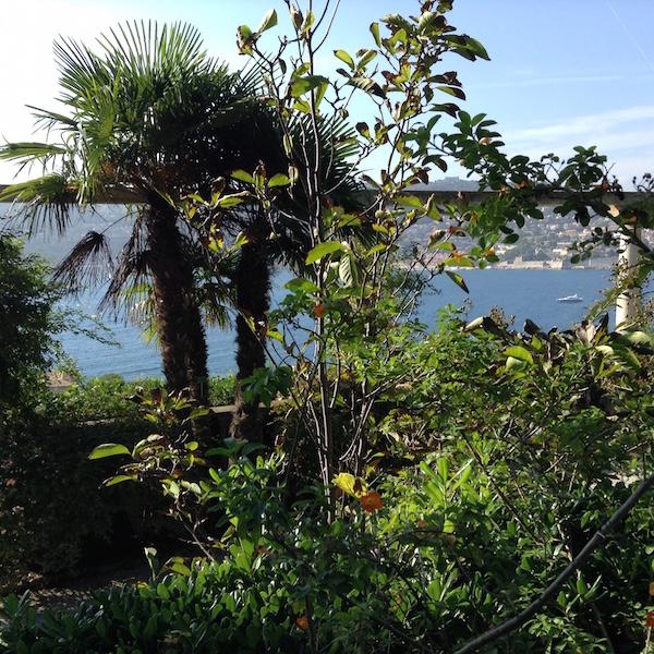 Ronnie_Hess-French_Mediterranean_Gardens_3-d-MyFrenchLife™, Mediterranean Gardens