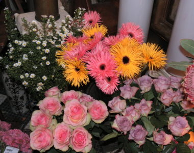 MyFrenchLife™–Muse-flowers-MyFrenchLife.org