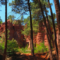 Roussillon - Only in Provence - MyFrenchLife