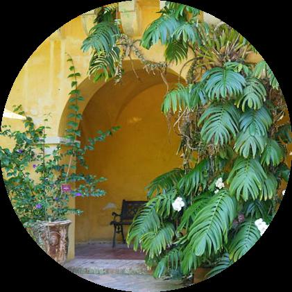 MyFrenchLife™ - MyFrenchLife.org - Exploring Provence - Jan Leishman - Menton - Val Rahmeh
