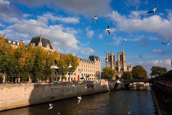 MyFrenchLife™ - Paris in September - Notre-Dame de Paris