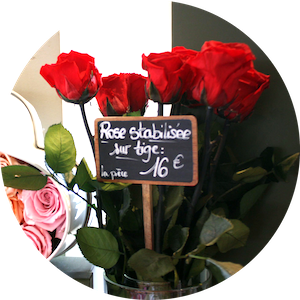 MyFrenchLife™ – MyFrenchLife.org - Paris Mosaic - Paris florists - left bank - rive gauche - Au Nom De la Rose - red roses