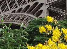 MyFrenchLife™ - MyFrenchLife.org - Paris in April - 2017 - Paris in Spring - what's on - Eiffel Tower